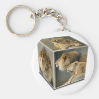 LION CUBE -  A Male, A FEMALE,  & A COUPLE Basic Round Button Keychain