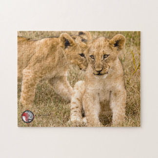 Lion cubs jigzaw puzzle, in support of CACH. Jigsaw Puzzle
