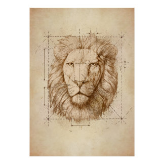Lion Drawing, Technical Poster