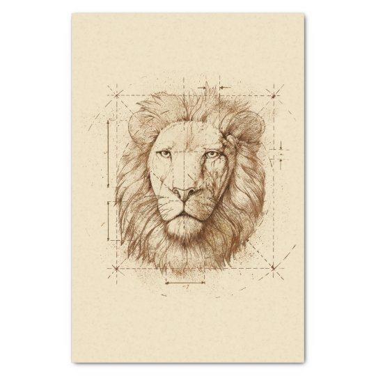 Lion Drawing Tissue Paper