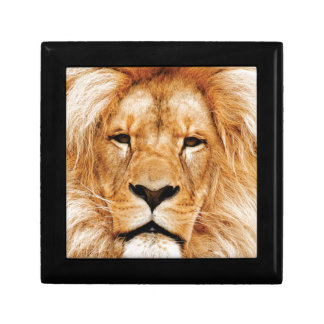 lion face yeah gift box