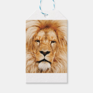 lion face yeah gift tags