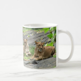 Lion Family at Rest mug