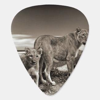 Lion Family Pick
