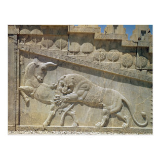 Lion fighting bull, relief east staircase postcard
