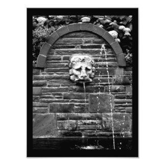 Lion Fountain Photo Print
