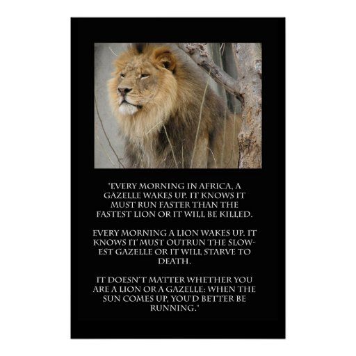 Lion Gazelle Running Quote Poster Zazzle Ca