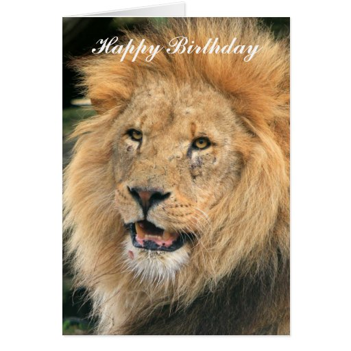 Lion King Birthday Invitations for nice invitations design