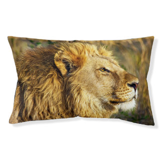 Lion Head Wildcat African Wildlife Animal Small Dog Bed