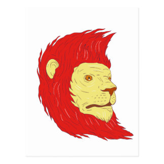 Lion Head With Flowing Mane Drawing Postcard