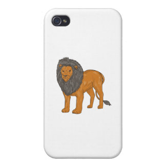Lion Hunting Surveying Prey Drawing Case For The iPhone 4