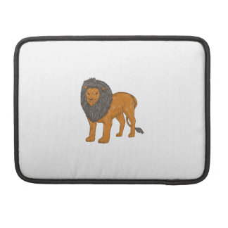 Lion Hunting Surveying Prey Drawing Sleeve For MacBooks