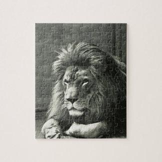 Lion Illustration Jigsaw Puzzle