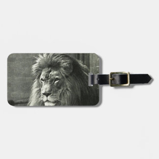 Lion Illustration Luggage Tag