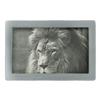 Lion Illustration Rectangular Belt Buckles