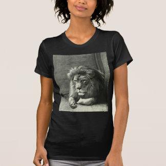 Lion Illustration T-Shirt