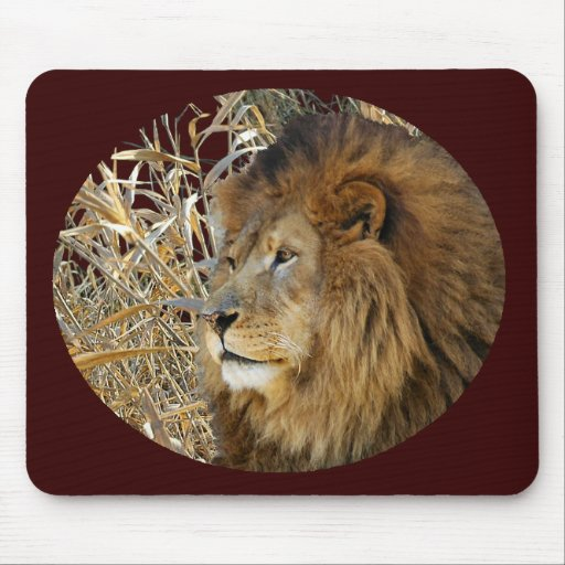 LION IN GRASS MOUSE MATS