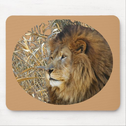 LION IN GRASS MOUSE MAT
