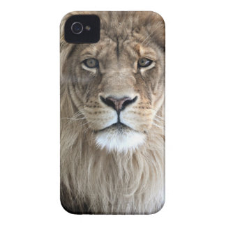 Lion King iPhone 4/4S case