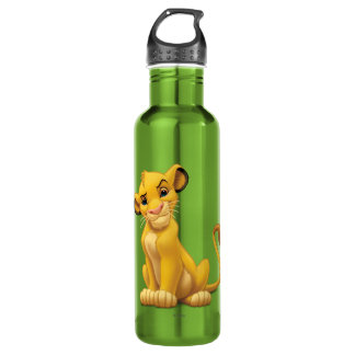 Lion King | Simba on Triangle Pattern 710 Ml Water Bottle