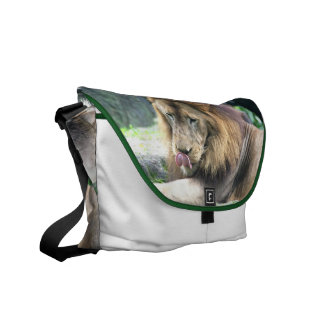 Lion Licking Messenger Bag
