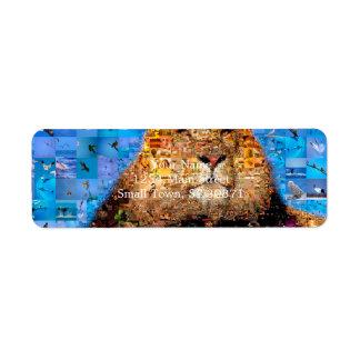 lion - lion collage - lion mosaic - lion wild return address label