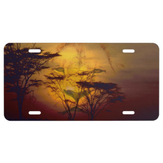 Lion Looking Over African Sunset License Plate