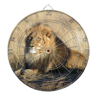 Lion lounging in Nambia Dartboard