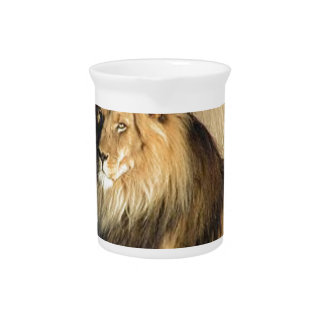 Lion lounging in Nambia Pitchers