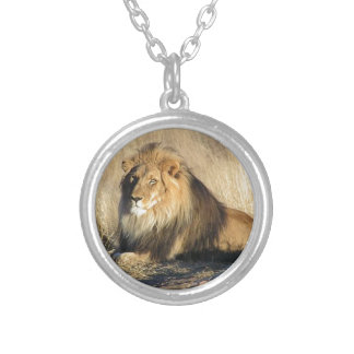 Lion lounging in Nambia Silver Plated Necklace