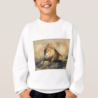 Lion lounging in Nambia Sweatshirt