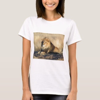 Lion lounging in Nambia T-Shirt