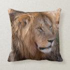 Lion Maasai Mara National Reserve, Kenya Throw Pillow