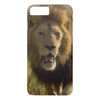 Lion male hunting iPhone 7 plus case