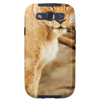 LION MOTHER SAMSUNG GALAXY S3 COVERS