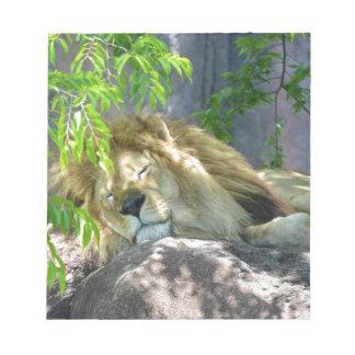 lion nap notepad