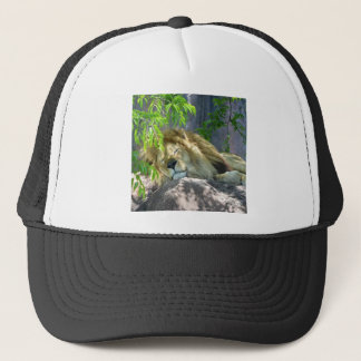 lion nap trucker hat