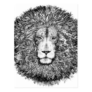 Lion nest black and white postcard