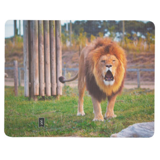 Lion Notebook