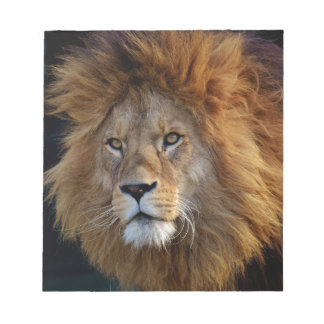 lion notepad