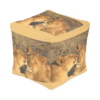 Lion Pair Square Pouf (seat/pillow)