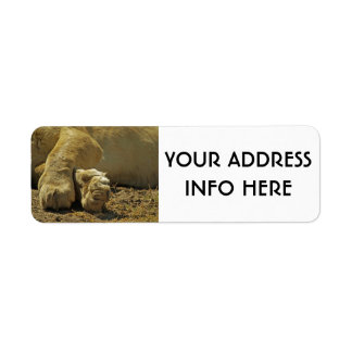 LION PAWS RETURN ADDRESS LABEL