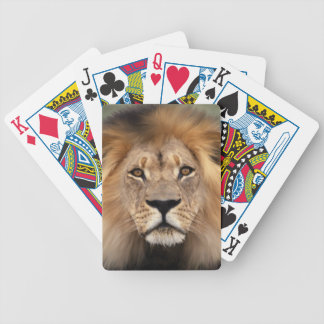 Lion Photograph Bicycle Playing Cards