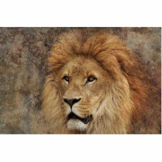 Lion Cut Out