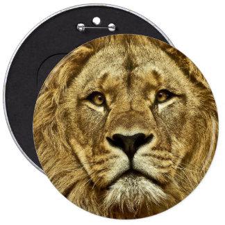 Lion portrait 6 inch round button