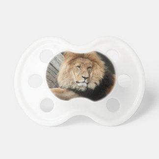 Lion Resting Pacifier