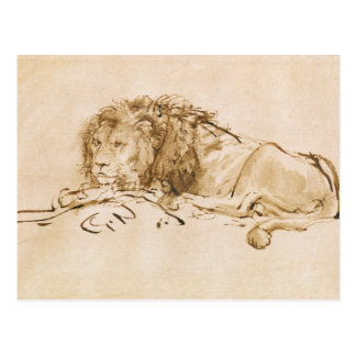 Lion Resting (pen and ink on paper) Postcards