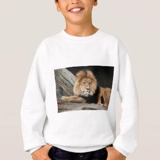 Lion Resting Sweatshirt