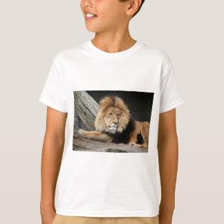 Lion Resting T-Shirt