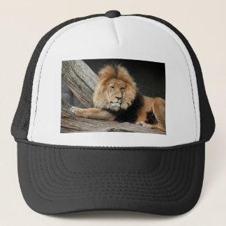 Lion Resting Trucker Hat
